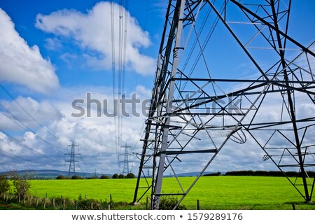 Domboldal fák zöld erő elektromosság elektromos Stock fotó © THP