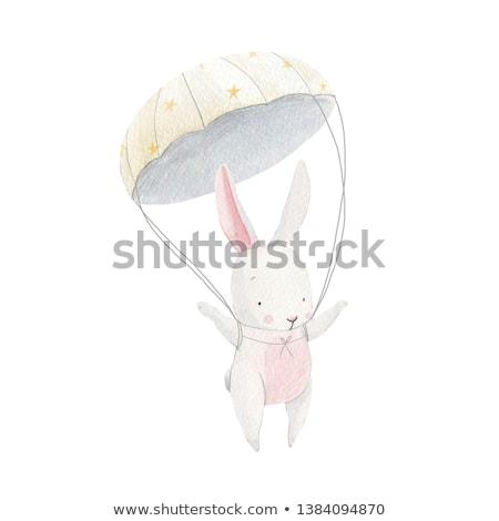 Léggömbök ejtőernyő illusztráció férfi sport tájkép Stock fotó © colematt