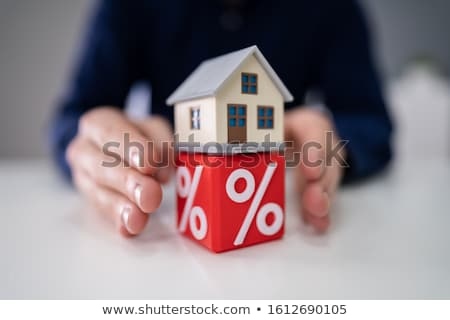 Person Protecting House Model Over Percentage Cubic Stock photo © AndreyPopov