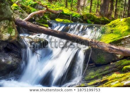 küçük · dağ · nehir · sonbahar · manzara - stok fotoğraf © artush