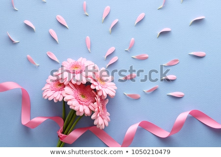 Valentines day card with gift box and gerbera flowers Stock photo © karandaev
