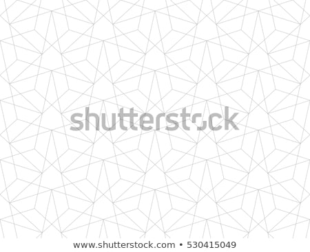 Seamless Vector Pattern. Abstract Geometric Background. Linear Grid Structure. Stock photo © samolevsky