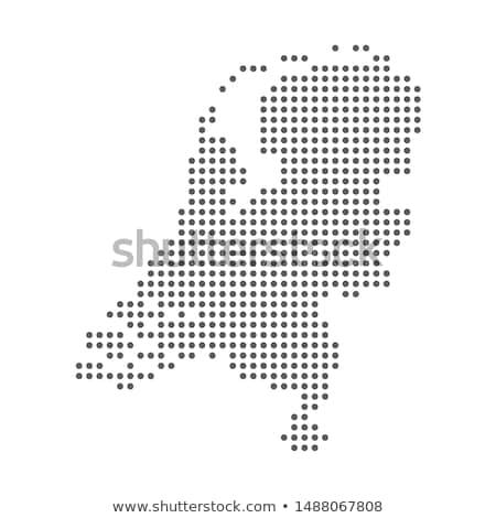 Mappa Holland verde tulipano bianco isola Foto d'archivio © mayboro
