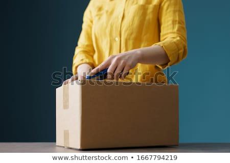 Box cutter Stock photo © blanaru