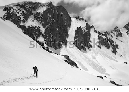 avalanche in mountains stock photo © bsani