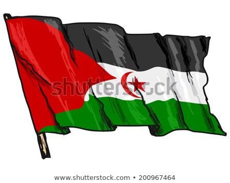 Bandera occidental sáhara mano color país Foto stock © claudiodivizia