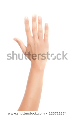 woman legs and hands white background stock photo © nobilior