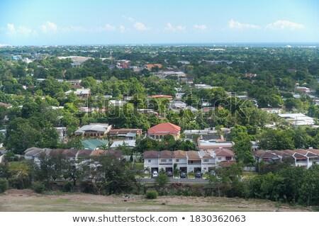 Vue maisons Jamaïque maison arbre Photo stock © bmonteny