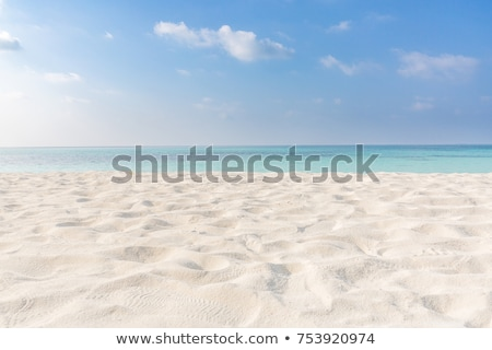 white sand beach stock photo © kubais