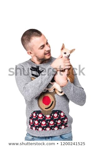 man and chihuahua stock photo © cynoclub