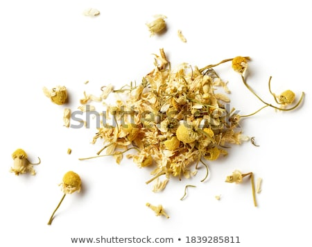 Dry chamomile Stock photo © yelenayemchuk