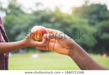 Garçon pomme rouge deux mains manger Photo stock © Agatalina