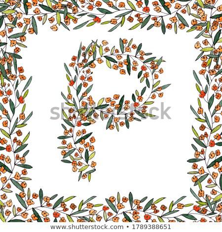 Illusztráció színes örvények díszek értékes kövek Stock fotó © yurkina