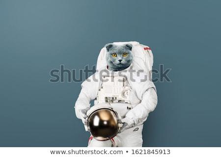Spaceman Stock photo © bluering