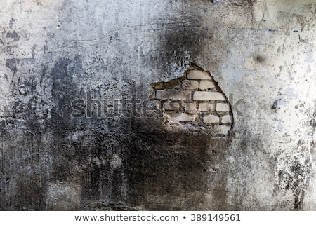 Grunge burned wall Stock photo © IMaster