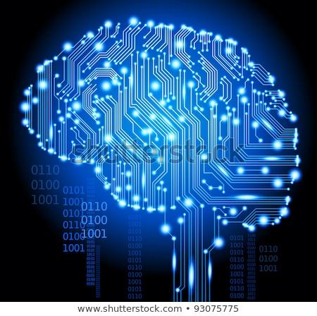 mesterséges · intelligencia · agy · bináris · kód · internet · absztrakt · technológia - stock fotó © leo_edition