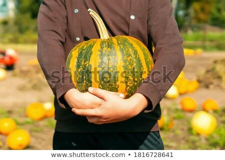 Młody chłopak ogród produkować na zewnątrz portret Zdjęcia stock © IS2