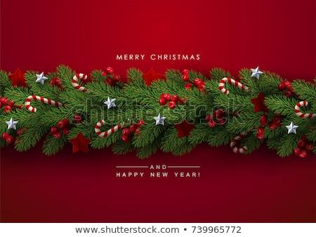 vector · christmas · pine · krans · Rood · boeg - stockfoto © dashadima