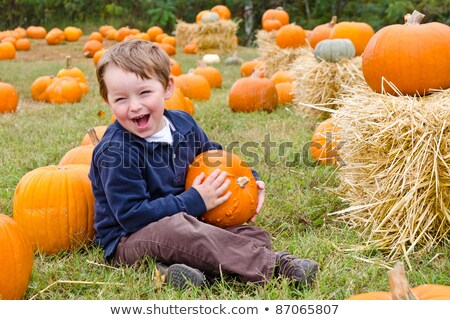 A Happy young boy picking a pumpkin for Halloween Stock photo © Lopolo