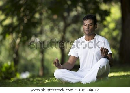 férfi · jóga · trópusi · park · kert · egészség - stock fotó © galitskaya