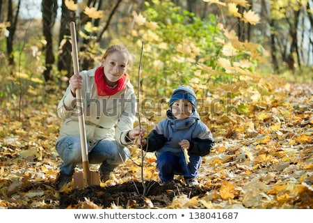 family planting tree with  spade outdoor in autumn Stock photo © Lopolo