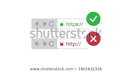 Secure web connection on a web browser Stock photo © m_pavlov