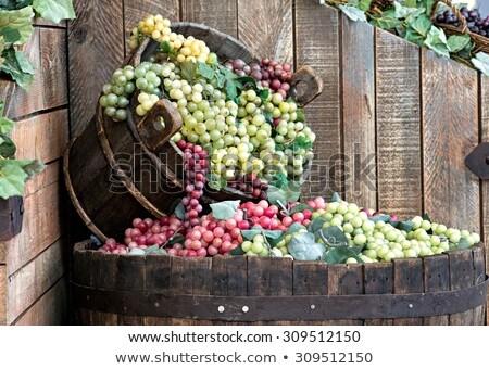 Secchio vino uve completo lavoro strumenti Foto d'archivio © tepic