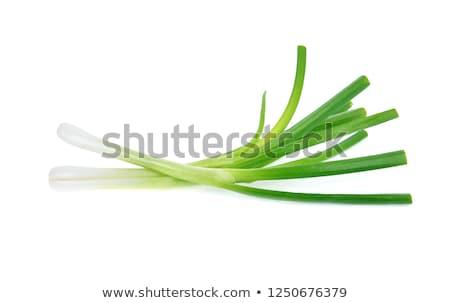 Yeşil soğan yalıtılmış beyaz doğa sağlık arka plan Stok fotoğraf © ozaiachin