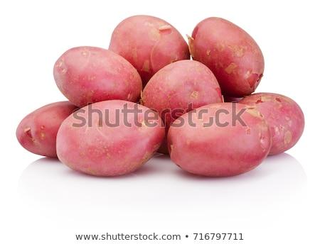Red potatoe isolated on white Stock photo © ozaiachin