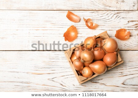 Fresh ripe onion Stock photo © karandaev