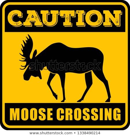 vector deer yellow sign stock photo © nickylarson974
