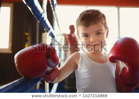 pequeno · boxeador · anos · velho · menino · jogar - foto stock © nyul