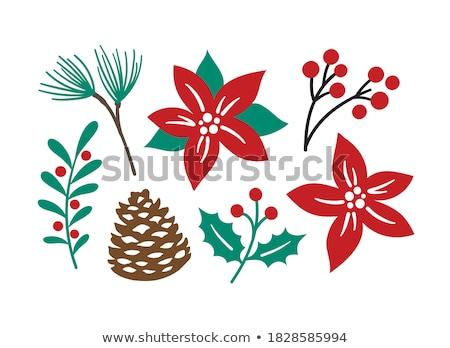 foglie · fiore · primo · piano · top · rosso · albero - foto d'archivio © devon