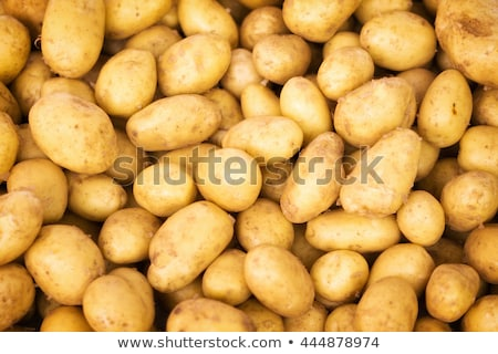 fresh potatoes background stock photo © digifoodstock