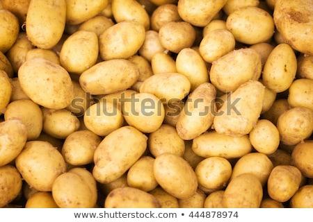 fresh potatoes background Stock photo © Digifoodstock
