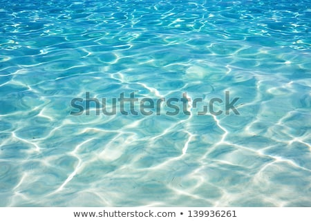 kék · víz · úszómedence · nap · tükröződések · fény - stock fotó © dreamframer
