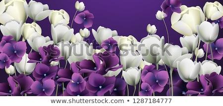 fehér · virágok · szalag · vektor · retro · virágmintás · hátterek - stock fotó © frimufilms