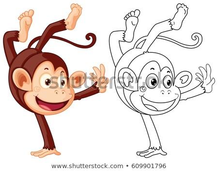 Doodles drafting animal for monkey flipping Stock photo © colematt