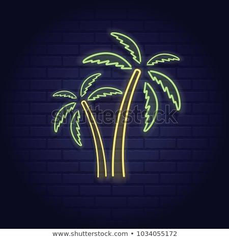 Zomer paradijs poster palmboom zon licht Stockfoto © SArts