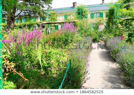 Yeşil bahçe galeri ağaç çim Stok fotoğraf © neirfy
