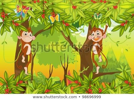 Kettő majmok banán naplemente illusztráció sziluett Stock fotó © adrenalina