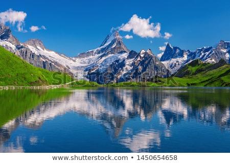 Alps meadow summer view Stock photo © wildman