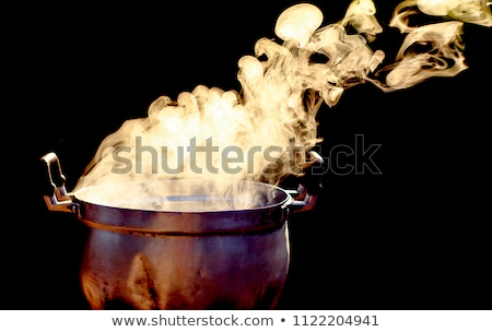 Boiling silver kettle on a wood stove Stock photo © aetb