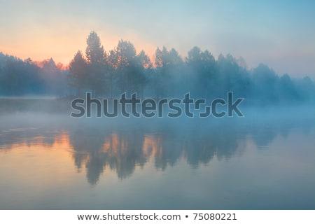 Yansıma ağaçlar nehir şafak bahar orman Stok fotoğraf © ryhor