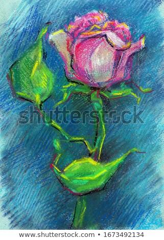 緑 チョーク 草 子 デザイン 塗料 ストックフォト © gladiolus
