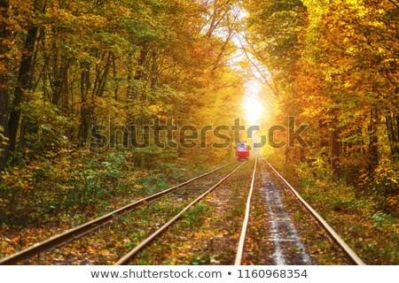 鉄道 · トラック · 鉄道 · 業界 · 色 - ストックフォト © konradbak