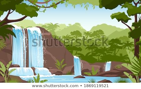 Wasserfall See Natur Grün Bäume Wald Stock foto © robuart