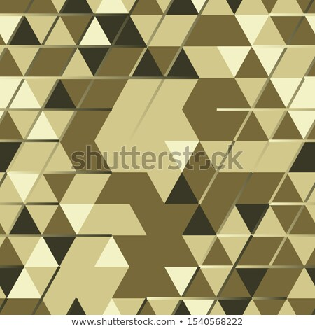 Khaki seamless pattern with triangular protection ornament and l Stock photo © SwillSkill
