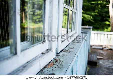 The window of the old wooden log house on the background of wood Stock photo © inxti