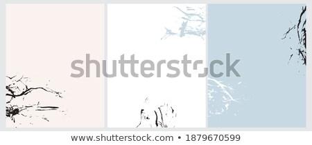 Splash wody biały streszczenie formularza charakter Zdjęcia stock © supercrimson